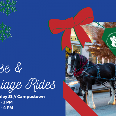 FB Event - Horse and Carriage Rides